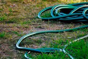 Verbrannter Rasen und Gartenschlauch