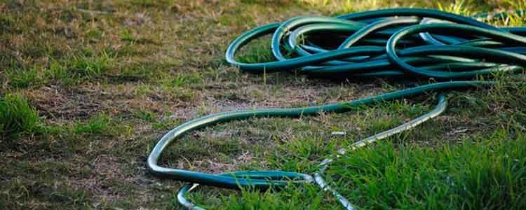 Vertrockneter Rasen und Gartenschlauch